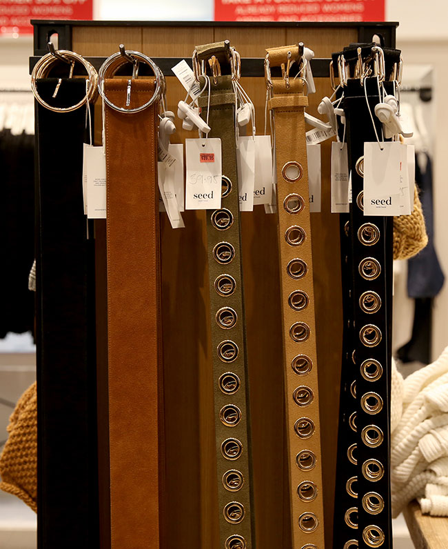 Seed belts
